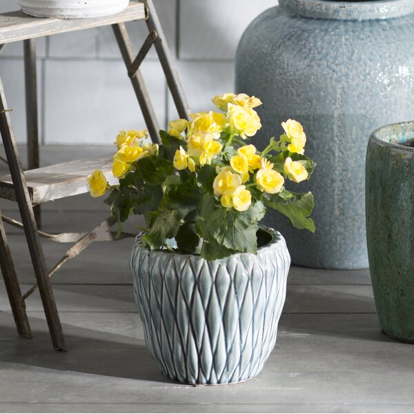 Aurelien Ceramic Pot Planter by Lark Manor