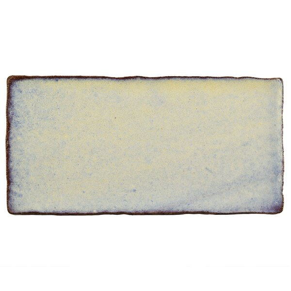 Antiqua 3 x 6 Ceramic Subway Tile in Special Pergamon by EliteTile