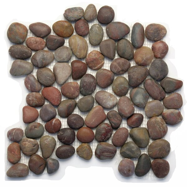 Decorative Pebbles Random Sized Natural Stone Pebble Tile in Honed Agate by Solistone