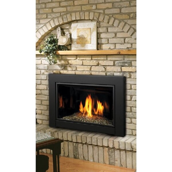 Review Direct Vent Natural Gas/Propane Fireplace Insert