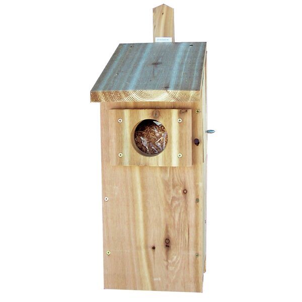 Screech Nest Box 21 in x 11.5 in x 8.5 in Birdhouse by Stovall