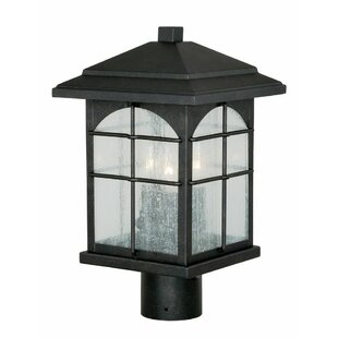 Best Deals Feeley Outdoor 3-Light Lantern Head By Charlton Home