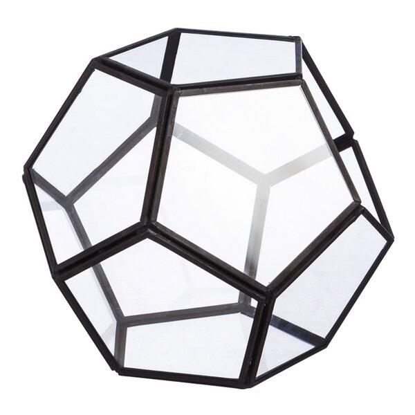 Geometric Novelty Glass Terrarium by Evergreen Enterprises, Inc