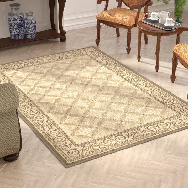 Costillo Beige Indoor/Outdoor Area Rug by Astoria Grand