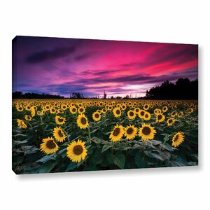 'Sunflower Sunset' Photographic Print on Wrapped Canvas by Latitude Run