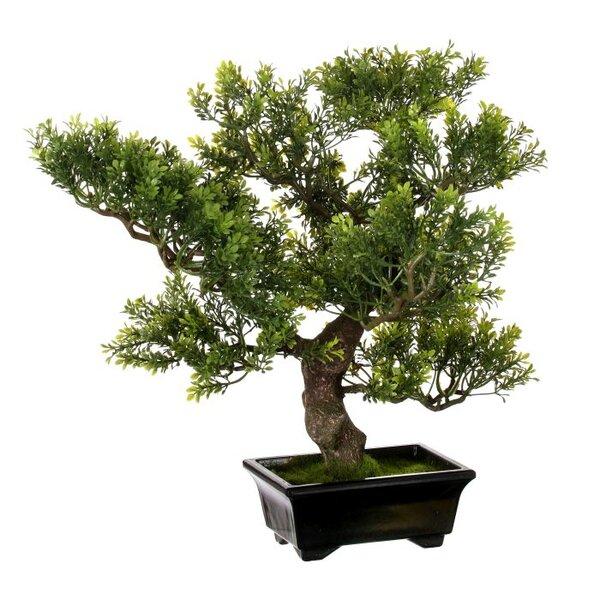 15 Faux Boxwood Table Bonsai Tree in Pot by Regency International