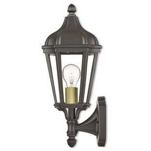 Reviews DeMotte 1-Light Outdoor Wall Lantern By Darby Home Co