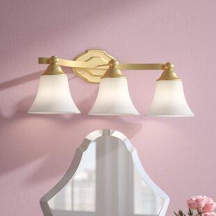 Best Reviews Destrey 3-Light Bell Vanity Light By Willa Arlo Interiors