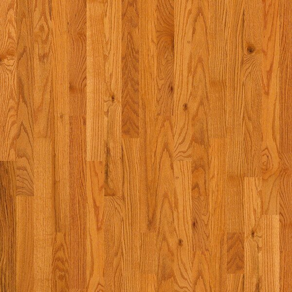 3-1/4 Solid Oak Hardwood Flooring in Caramel by Welles Hardwood