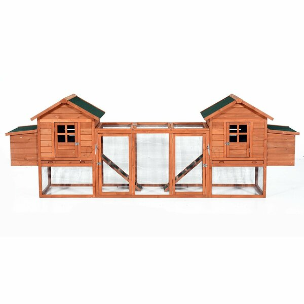 Gaenside Premium Dual Hen House Backyard Chicken Coop with 2 Outdoor Ramps and 2 Nesting Boxes by Tucker Murphy Pet