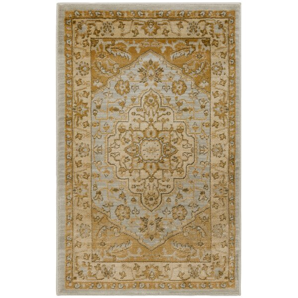 Austin Light Grey/Gold Area Rug by Safavieh