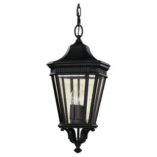 Great choice Chesterhill 1-Light Outdoor Hanging Lantern By Darby Home Co