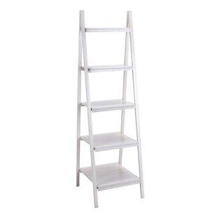 Spacio'S Ladder Bookcase Cole & Grey