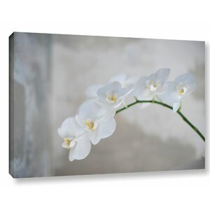 'White Orchid' by Elena Ray Photographic Print on Wrapped Canvas by ArtWall