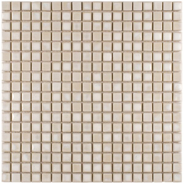 Arcadia 0.56 x 0.56 Porcelain Mosaic Tile in Glacier by EliteTile