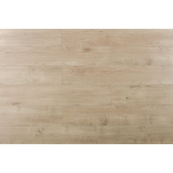 Trini 6.7 x 48 x 12mm Oak Laminate Flooring in Ultra Champagne by Serradon