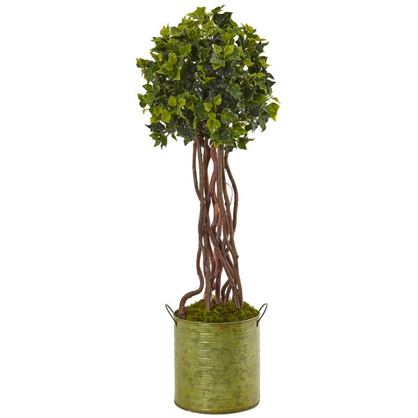 Artificial English Ivy Floor Ivy Topiary in Planter by Gracie Oaks