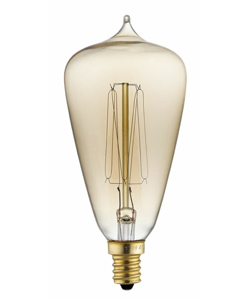 40W Edison Light Bulb by Kichler