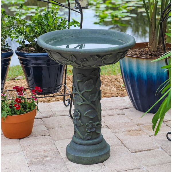 Vineyard Outdoor Birdbath by Wildon Home ®