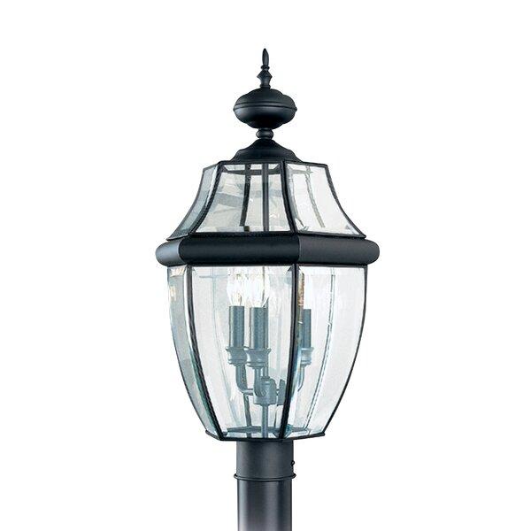 3-Light Lantern Head by Bloomsbury Market