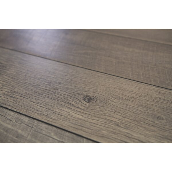 Geneva Prestige 6 x 48 x 12mm Oak Laminate Flooring in Gray by Branton Flooring Collection