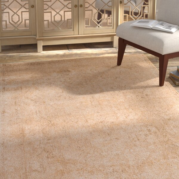 Zehner Ivory/Light Gold Area Rug by Bloomsbury Market