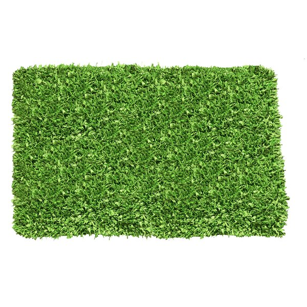 Kaylyn Shaggy Hand-Knotted Light Green Area Rug by Ebern Designs