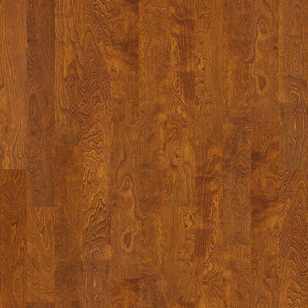 Pittman 5 Engineered Birch Hardwood Flooring in Florence by Shaw Floors