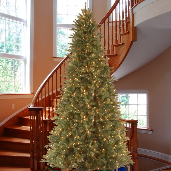 Green Fir Artificial Christmas Tree with Clear Lights with Stand by Lark Manor