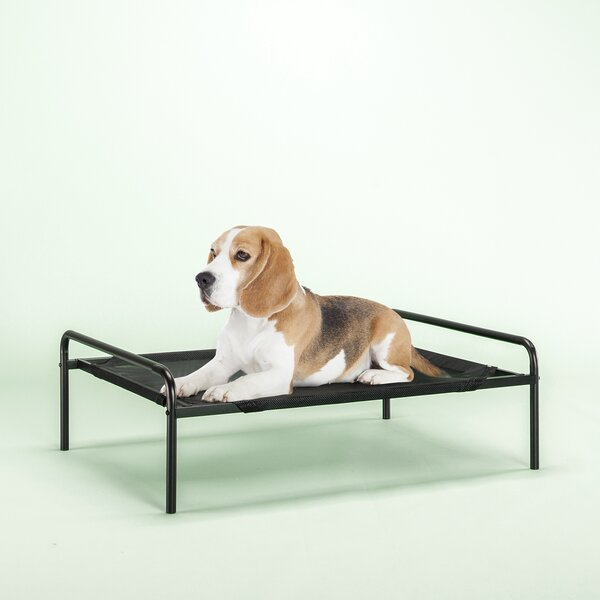 Elevated Pet Cot Bed by Zinus