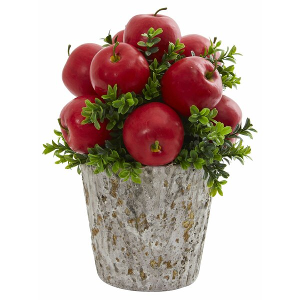 Artificial Apples and Boxwood Mixed Centerpiece in Weather Planter by Alcott Hill