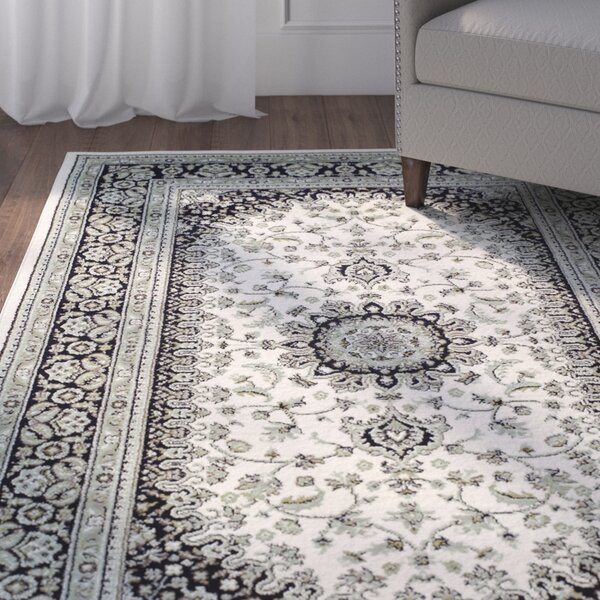 Vassar Ivory/Black Area Rug by Astoria Grand