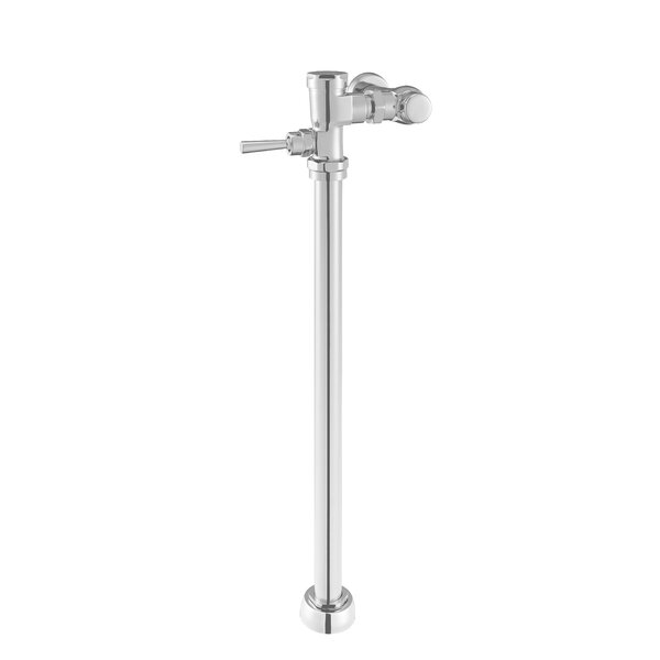 Exposed Manual Clinic Sink Flush Valve by American Standard