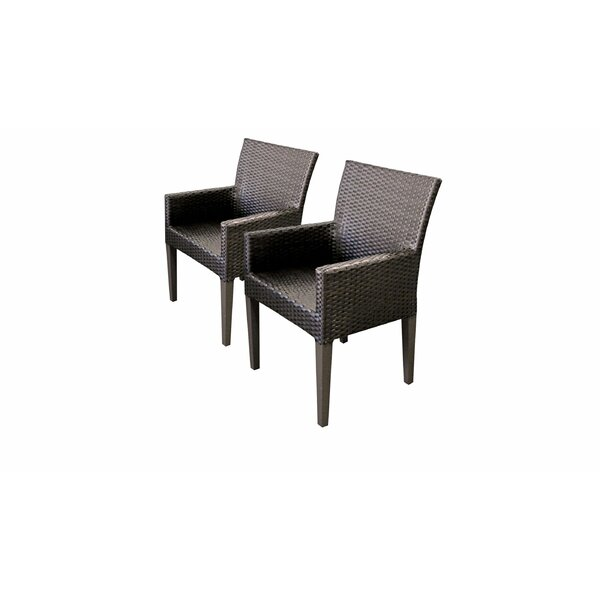 Fernando Patio Dining Chair (Set of 2) by Sol 72 Outdoor