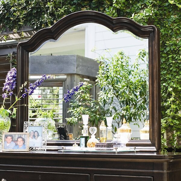 Steel Magnolia Decorative Arched Mirror by Paula Deen Home