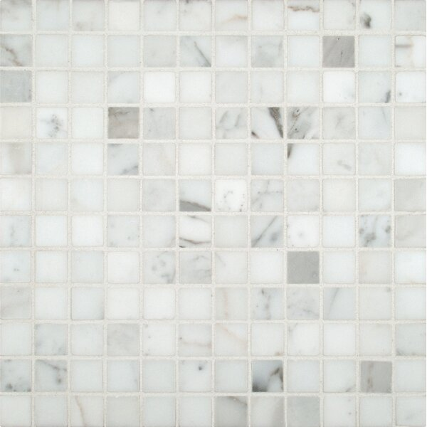 Calacatta Gold 1 x 1 Marble Mosaic Tile in White by MSI