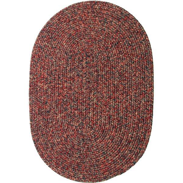 Seline Braided Red Indoor/Outdoor Area Rug