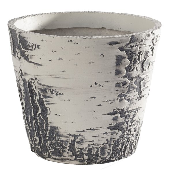 Nature Innovations Natures Look Plastic Pot Planter by Millwood Pines