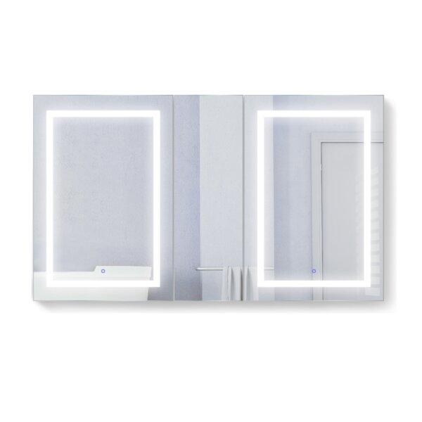 Vandemark 60 x 36 Recessed or Surface Mount Medicine Cabinet with 6 Adjustable Shelves and LED Lighting