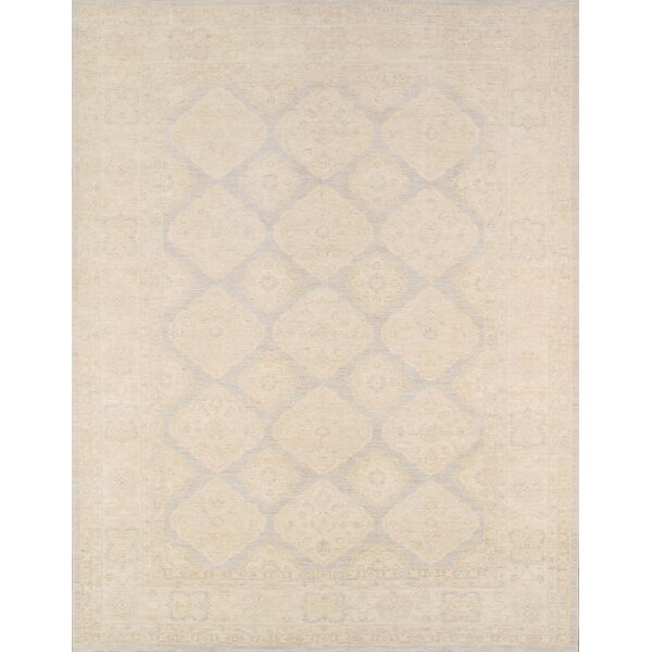 Ferehan Hand-Knotted Light Gray Area Rug by Pasargad