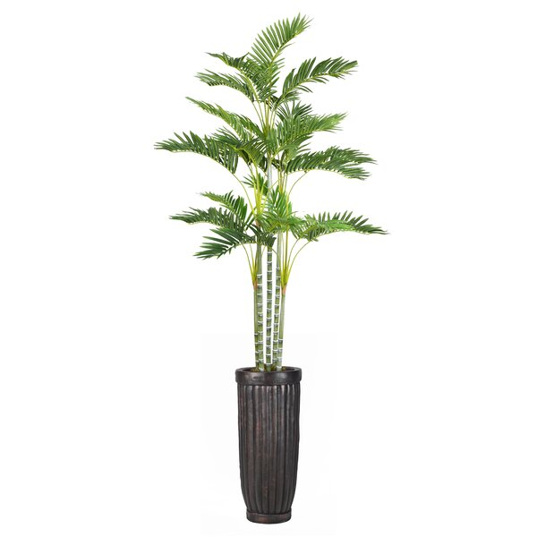 Palm Tree in Planter by Bloomsbury Market