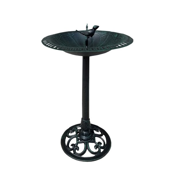 Bird and Twig Birdbath by Pier Surplus