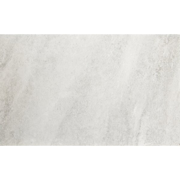 Trovata 12 x 24 Porcelain Field Tile in Diary by Emser Tile