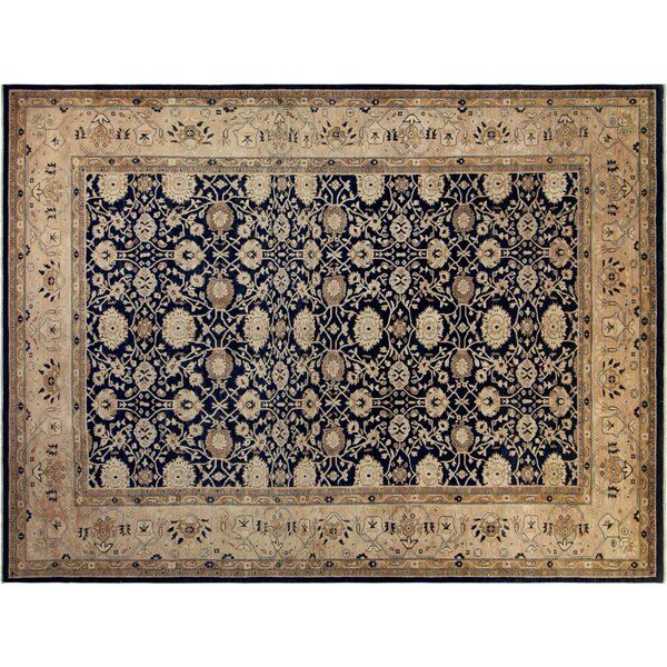 Xenos Hand-Knotted Wool Blue/Tan Area Rug by Astoria Grand