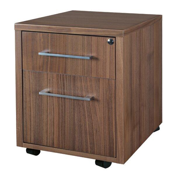 Hilburn 2-Drawer Mobile Vertical Filing Cabinet by Red Barrel Studio