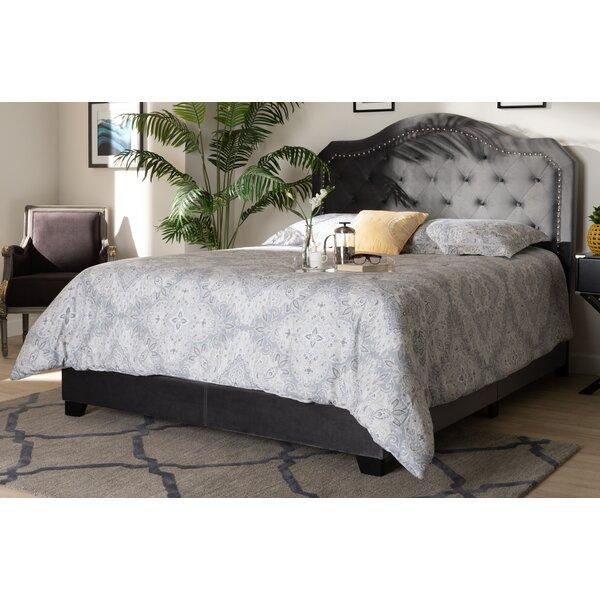 Roby Samantha Velvet Upholstered Standard Bed by Everly Quinn Everly Quinn