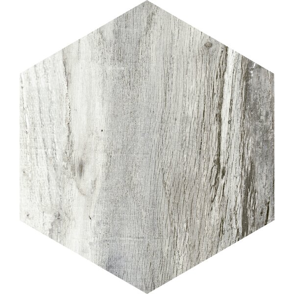 Docklight Hexagon 9.5 x 11 Porcelain Wood Tile in Magpie by Parvatile