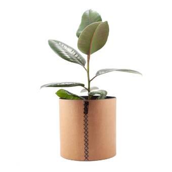 Ivy Bronx Chereen 2 Piece Pot Planter Set Wayfair