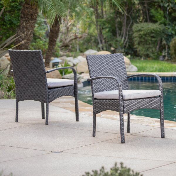 Abdullah Patio Dining Chair with Cushion (Set of 2