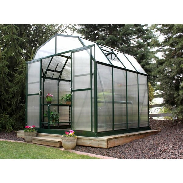 Elite Heavy-Duty Aluminum 8 Ft. W x 8 Ft. D Greenhouse by Grandio Greenhouses